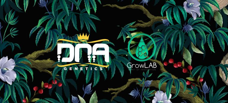 GrowLab DNA Genetics