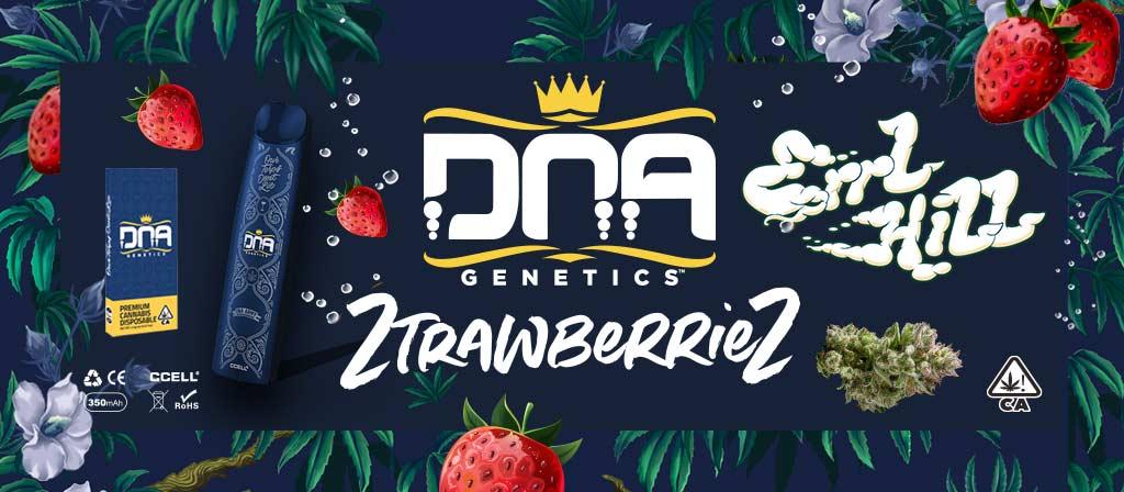 ZtrawberrieZ DNA Genetics Errl HIll