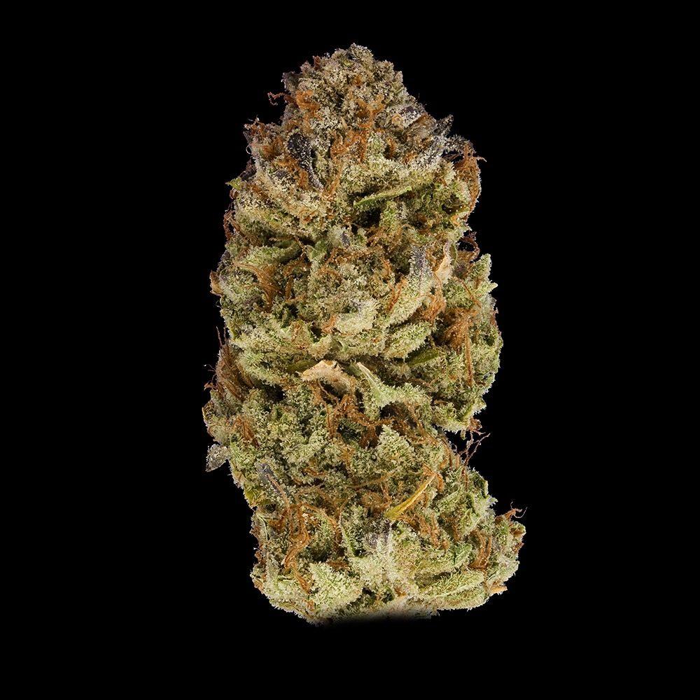 DNA Genetics 24k Gold Cannabis Flower Bud Shot